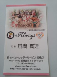 Always pet sitter carte de visite